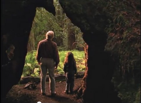 Saving the Redwoods 30 Second Commercial – Produced by Wakan Films